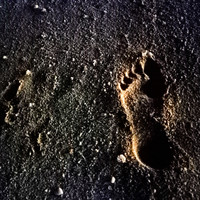 A footprint found in Chile is 'oldest' in Americas, scientists say