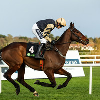 3 expert bets worth your attention on Gold Cup Day at the Punchestown Festival