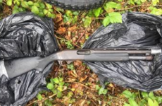 Loaded shotgun discovered in undergrowth at west Dublin housing estate