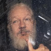 Julian Assange sentenced to 50 weeks in jail for breaching bail in UK