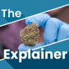 The Explainer: Can Ireland grow its own medicinal cannabis?