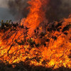 Man arrested over gorse fires in Donegal that destroyed house on Good Friday