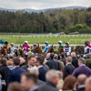 Hurricane Darwin the value option on the final day at Punchestown