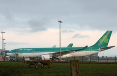 Passengers mistakenly used emergency exits to get off Aer Lingus plane after emergency landing