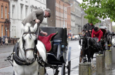 Dublin carriage drivers say they're 'in limbo' and want Shane Ross's help with licence debacle