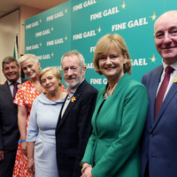 Fine Gael candidates in the lead in each European constituency, new opinion poll finds