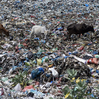 Landmark pact to regulate plastic waste signed by 180 nations - but not the US
