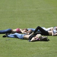 Poll: Have you ever pulled a (sun) sickie to get off work?