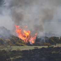 Orange forest fire warning in place as temperatures rise