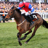 Remember Quevega? Cheltenham superstar's first daughter makes winning start for Mullins