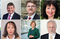 Meet your candidates: Ireland South's hopefuls answer the big questions of the campaign