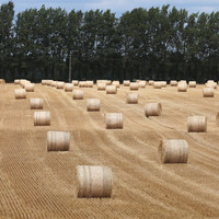 Question: What would you change about Europe's agricultural policy?