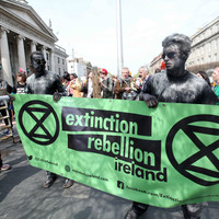 Question: Should Ireland increase its carbon tax?