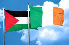 Government told that Occupied Territories Bill could affect immigration status of Irish in US