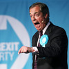 How Nigel Farage's new party capitalised on Brexit chaos to surge into the lead in the Euro polls