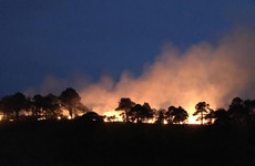 Deliberate fire in Wicklow Mountains' 'Coronation Plantation' sparks probe