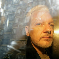 Prosecutors issue formal request to hold Julian Assange on suspicion of rape