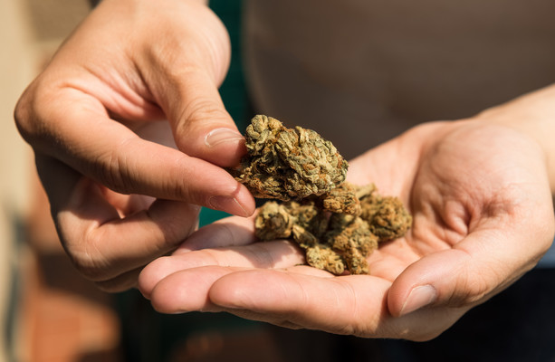 Poll: Should Ireland decriminalise the possession of drugs for personal use?