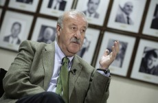 Del Bosque yet to finalise Euro squad