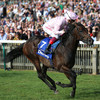 Weekend tips: Surprise inclusion can prove Too Darn Hot in Irish 2,000 Guineas