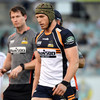 Pocock calls an end to his time with Brumbies and chases World Cup fitness