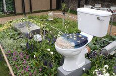 From an electricity-generating toilet to a whiskey barrel hot tub: Here are our 6 favourite gardens at Bloom