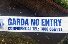 Gardaí find shotgun cartridges and items purporting to be firearms in west Dublin