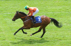 'Three grand is all he cost! Can you imagine?' It's a long way from Tipperary for unlikely Epsom Dash favourite Hathiq