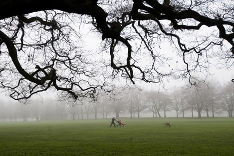 A woman takes a child and a dog for a walk through Bushy Park on a misty morning in Dublin