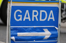 Gardaí investigating hit-and-run in Louth as a 'deliberate act of endangerment'