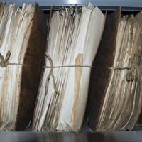 New historical birth, marriage and death registers available online for public to access