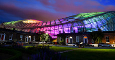 The Aviva Stadium has been lit up with a difference this week