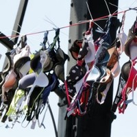 Wearing a tight bra? Public greatly misinformed about cancer risks