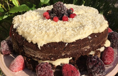 'If heaven was a cake, this would be it': 5 divine plant-based dishes from a young vegan cook