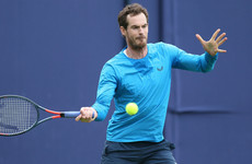 'Pretty much pain-free' Murray hoping for singles return this year