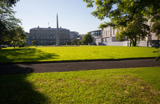 Poll: Should the Leinster House lawn be let grow into a wild meadow?