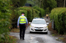 Investigation underway after two men killed in light aircraft crash in Kildare