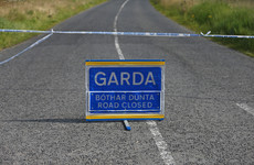 Man (50s) dies after being struck by car in Offaly