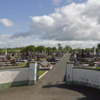 Bomb squad called to Lurgan graveyard after police searching for drugs find 'suspicious object'