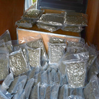 Three men arrested after €1.96 million worth of herbal cannabis seized in Dublin industrial unit