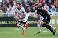 Coetzee earns Springbok recall after excellent season for Ulster