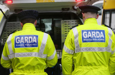 New law will pave the way for gardaí to wear body cams