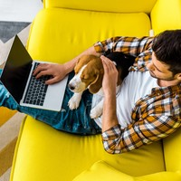 Poll: Do you think you would be more productive working from home?
