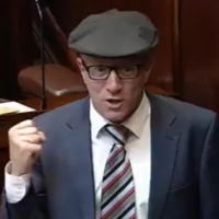 Healy Rae tells ministers to get out of their 'ivory towers' and talk to Irish farming families about EU trade deal