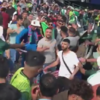 Police make arrests and investigate footage of fans fighting at Cricket World Cup