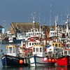 Penalty points for fishermen could be rolled out to encourage 'good behaviour' and avoid fines