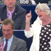 Ann Widdecombe stands by remarks likening Brexit to 'slaves' rising up 'against their owners'