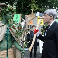 'We have to do more': Extinction Rebellion stage protest in Dublin against commercial forestry