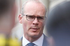 Ireland must prepare for 'ugly truths' of no-deal Brexit, warns Coveney