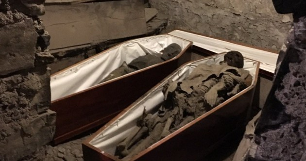 'Crusader' head restored as St Michan's Church reopens its crypt to the public